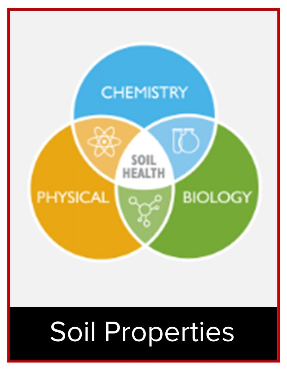 Soil Health includes chemical, physical, and biological properties.