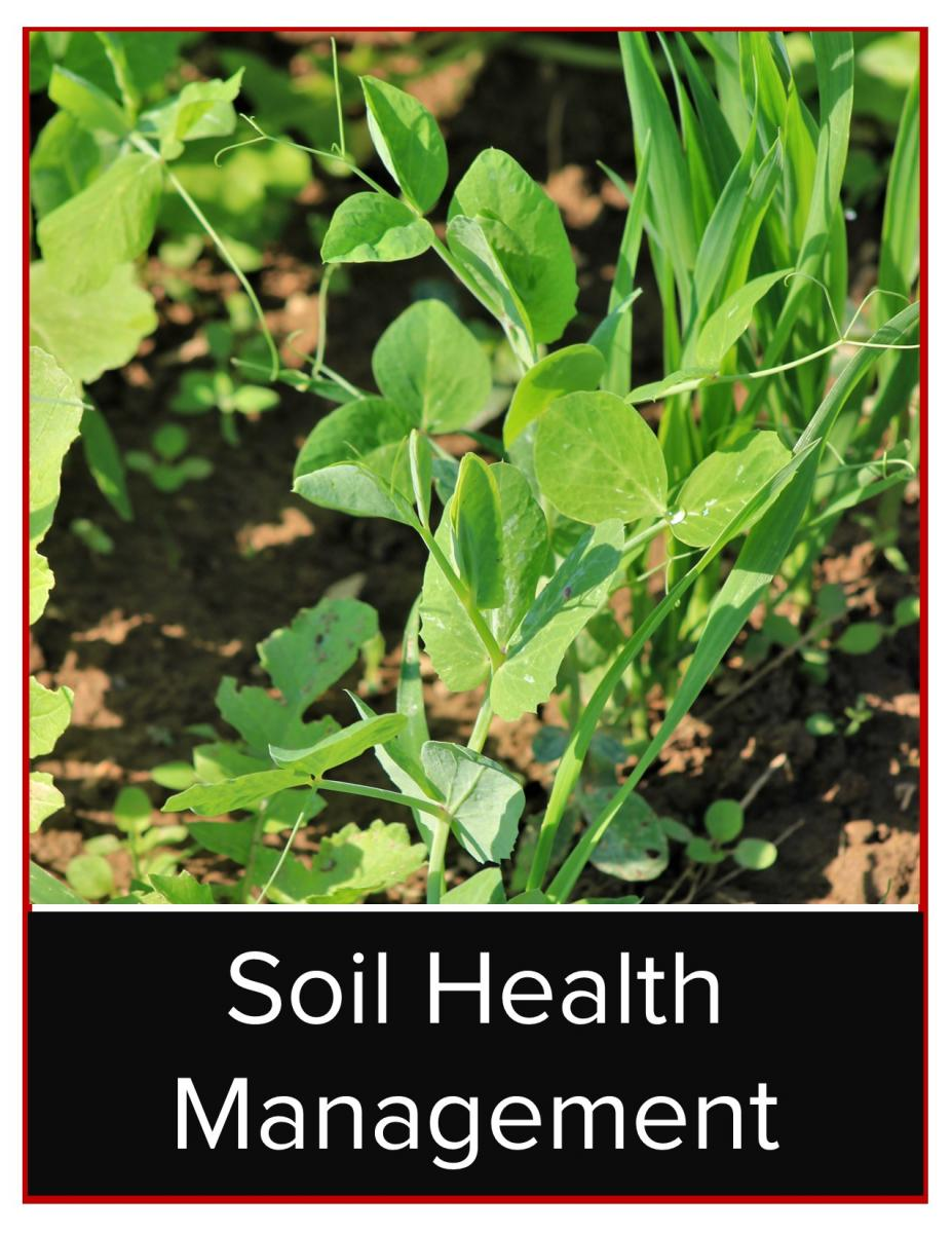 Management of crops and soils can impact soil health.